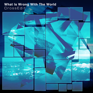 What Is Wrong With The World (Cross Edit)